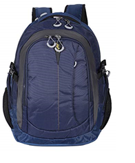 Fox Laptop Backpack Blue