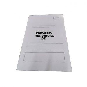 Processo Individual